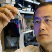 Японські вчені створили клітини, що вбивають рак (темодал)