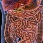 Ефективні препарати для лікування дисбактеріозу