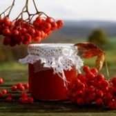 Червона горобина корисні властивості