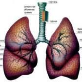 Нагноїтельниє захворювання легенів
