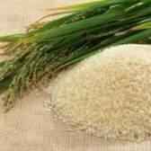 Рис білий: калорійність, корисні властивості