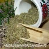 Трави для жінок: лікування жіночої статевої сфери