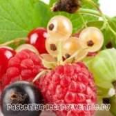 Варення з смородини, малини та агрусу