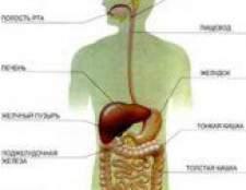 Дванадцятипала кишка: симптоми хвороби, лікування