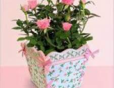 Як доглядати за домашніми трояндами?