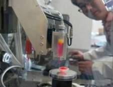 Пересадка органів - вирощування органів для людини