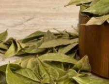 Застосування, властивості лаврового листа в народній медицині