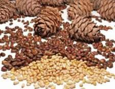 Продукти харчування багаті вітаміном в2