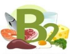 Вітамін в2: в яких продуктах міститься, для чого потрібен організму
